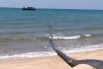 Khuất tất ở Dự án Lạc Việt: UBND tỉnh Bình Thuận yêu cầu kiểm tra, xử lý