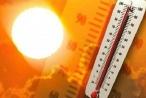 Sốc nhiệt, say nắng hãy sơ cứu đúng cách