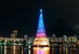 Chiêm ngưỡng 10 cây thông Giáng sinh đang giữ kỷ lục thế giới