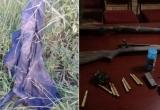 Nghi phạm săn trộm tê giác bị voi giết và đàn sư tử xâu xé kinh hoàng