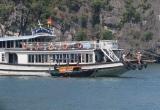 Triệu tập 15 chủ tàu du lịch ép khách mua hàng giá 'cắt cổ'