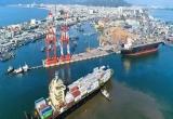Cảng Quy Nhơn vẫn quyết tâm tăng vốn điều lệ