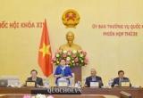 Phiên họp thứ 32 Ủy ban Thường vụ Quốc hội sẽ diễn ra từ 11 - 13/3