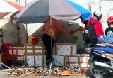 Cua biển gắn mác Cà Mau bán đổ đống vỉa hè Sài Gòn