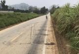 Thanh Hóa: Hai xe máy va nhau làm 4 người tử vong