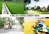 Hà Nội: Lập hội đồng, đoàn thẩm định xã đạt chuẩn nông thôn mới