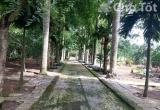 Bán đất nhà vườn tại huyện Quốc Oai