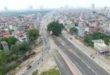 Hà Nội: Cận cảnh cây cổ thụ nằm giữa con đường 6 nghìn tỷ