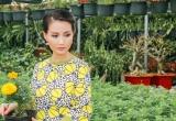 Sương Đặng -Hoa hậu quý bà châu Á tại Mỹ rộn ràng sắm tết Việt