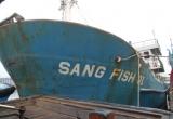 Tàu cá vỏ thép hỏng liên tục, ngư dân ngao ngán trả lại công ty đóng tàu