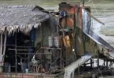 Yên Bái: Ngang nhiên 'trộm cắp' tài nguyên sát cửa nhà chủ tịch xã