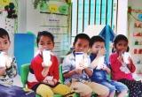 """Lãnh đạo Sở GD&ĐT Hà Nội: Trường học không được """"tự quyết"""" chọn sữa học đường"""