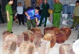 Liên ngành tỉnh Hà Giang mật phục thu giữ 20 cục gỗ nghiến trái phép của 1 đối tượng