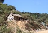 Nạn nhân 9X nghi tự tử bằng lá ngón ở Nghệ An