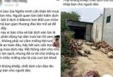 Tung tin sai việc hàng trăm con lợn dịch đào lên mổ bán, cô gái bị phạt 10 triệu đồng