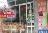 Bản tin Bất động sản Plus: Ai đang thao túng 'sốt đất' 4 huyện Thủ đô
