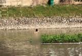 Hà Nội: Nghi ngáo đá, cô gái mặc nội y nhảy xuống sông Tô Lịch