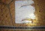 Hóa đơn tiền điện tiết lộ danh tính kẻ sát nhân