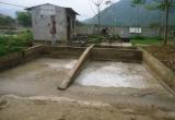 Xử phạt 50 triệu đồng nhà máy chế biến tinh bột sắn làm ô nhiễm môi trường