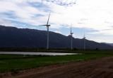 Đưa điện gió đầu tiên ở Ninh Thuận hòa lưới điện quốc gia