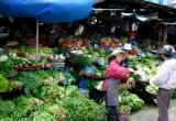 Tết Nguyên Đán: Sẽ không lo thiếu nguồn cung rau, thịt