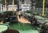 Quảng Ninh: Hàng trăm lít dầu tràn xuống Vịnh Hạ Long do bục đường ống