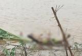 Thanh Hóa: Người dân bàng hoàng phát hiện thi thể cô gái bên bờ biển