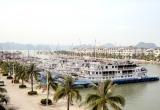 Quảng Ninh: Đình chỉ hoạt động hàng loạt tàu du lịch trên Vịnh Hạ Long