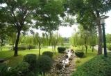 Địa ốc 7AM: Khu nghỉ dưỡng 'chui' trong rừng phòng hộ, không có đất bị thu hồi nhưng vẫn được tái định cư?