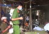 Quảng Ngãi: Ngủ trong rừng bị rắn độc cắn tử vong
