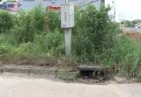 TP HCM: Hiểm họa từ những hố ga, miệng cống không có nắp đậy