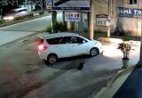Clip: 'Cẩu tặc' đi xế hộp, rút súng điện trộm chó ngay trước cửa nhà dân