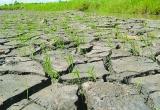 Lũ lụt, hạn hán và hành động của chúng ta