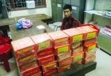 Nghệ An: Nam thanh niên vận chuyển trái phép hàng chục kg pháo nổ