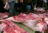 Hà Nội: Kiên quyết đấu tranh vận chuyển, kinh doanh lợn không rõ nguồn gốc