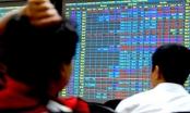 Cách xử lý tin đồn trong thị trường chứng khoán hiện nay