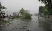Mưa đá, lốc càn quét các huyện miền tây xứ Nghệ gây thiệt hại nặng nề