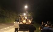 Tuyên Quang: Cán bộ thú y cấp giấy phép kiểm dịch bị đình chỉ công tác