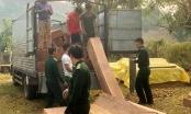 Kon Tum: Phát hiện nhiều bãi tập kết gỗ lậu khu vực biên giới