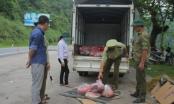 Hà Giang: Tiêu hủy hơn nửa tấn thịt lợn được vận chuyển từ vùng dịch tả lợn châu Phi
