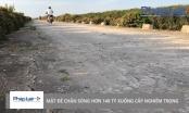 Hậu Lộc – Thanh Hóa: Đê chắn sóng trăm tỷ xuống cấp nghiêm trọng sau hơn 2 năm sử dụng