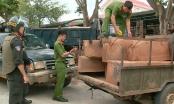 Nhóm đối tượng vận chuyển gỗ lậu, tông thẳng vào công an để tẩu thoát