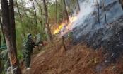 Nghệ An: Hàng trăm người trắng đêm cứu rừng thông bốc cháy dữ dội giữa nắng hạn đỉnh điểm