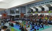 Khai mạc Giải võ thuật cổ truyền các võ đường Bình Định