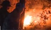 Video: Hàng ngàn người trắng đêm chiến đấu với cháy rừng ở Hà Tĩnh