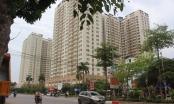 Bản tin Bất động sản Plus: Chủ đầu tư sai phạm, KĐT Tân Tây Đô bị ngưng cấp sổ