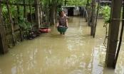 Nghệ An: Mưa lớn suốt đêm gây vỡ đê, nhiều hộ dân chìm trong trong biển nước