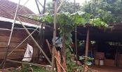 Một bé trai bị điện giật tử vong khi chơi ở nhà hàng xóm