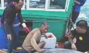 Cứu sống cụ ông ôm phao lênh đênh trên biển suốt đêm