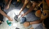 CSGT Nghệ An tóm gọn 2 đối tượng dùng xe Fotuner vận chuyển ma túy
